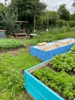 Allotment - Doctors Lane 2 - Click to open full size image