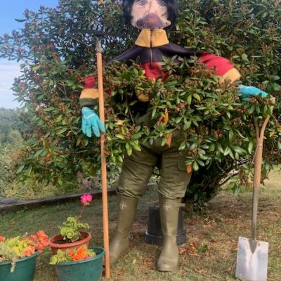 Mr Bush Scarecrow - Click to open full size image
