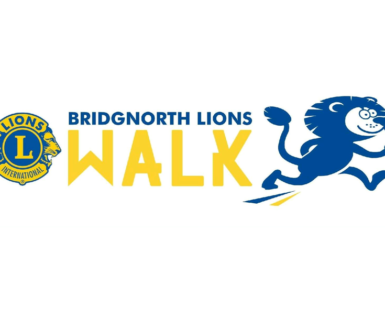 Bn Walk Logo Lions